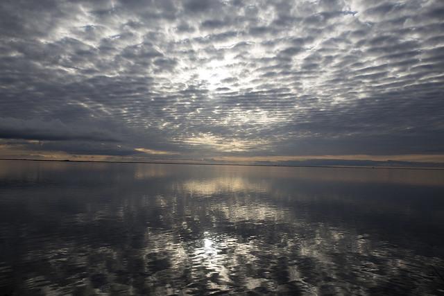 Esteros del Ibera- Julio 2015-00032