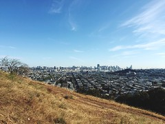 179/365: Bernalwood in the summer // Project 365 2015 In 365 Photos at Bernal Heights Park