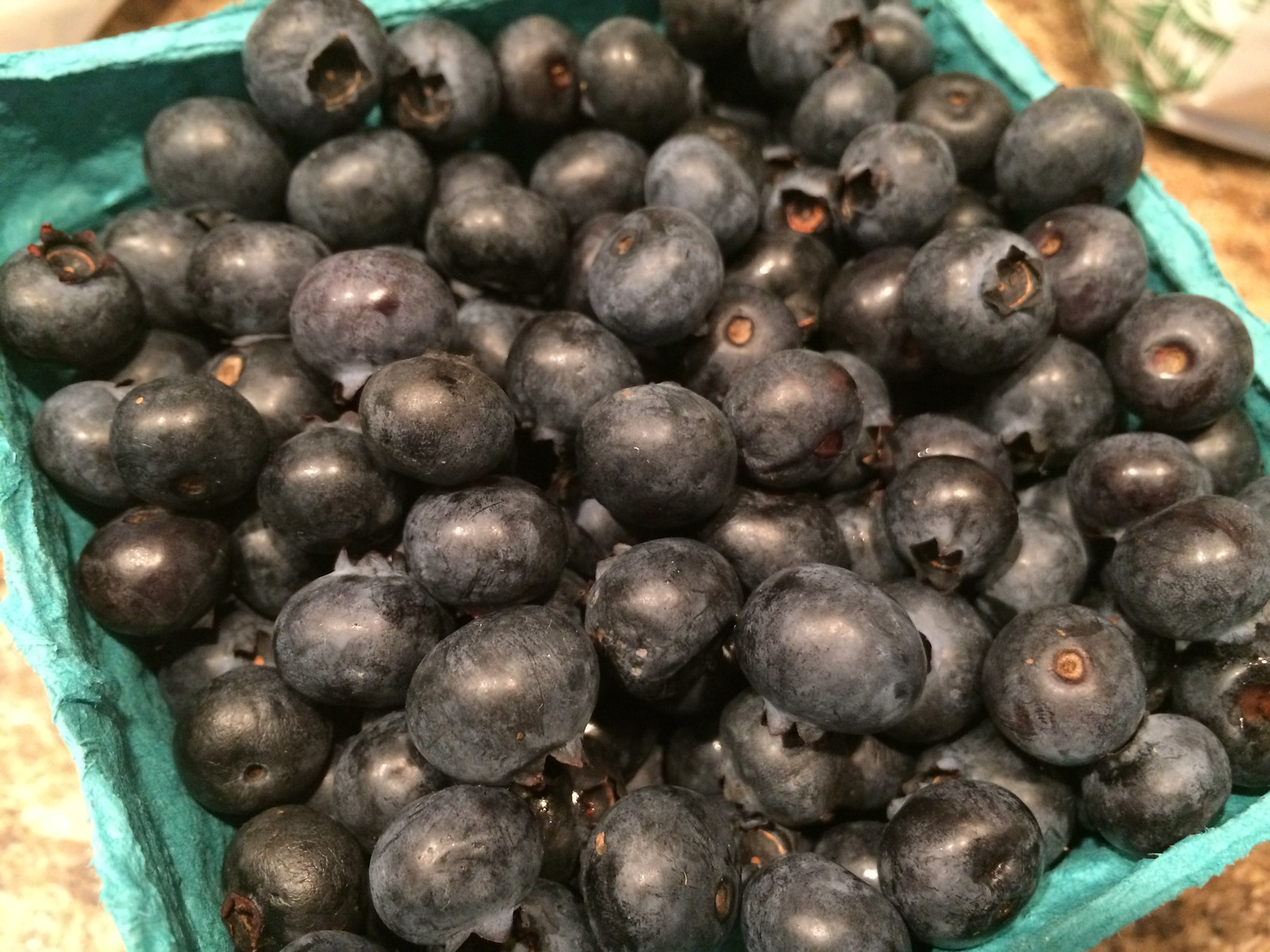 Dorothy's blueberries
