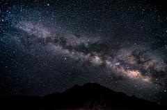 A Place Among Stars