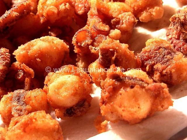 Poulpe Frit-Pulpito Frito © Ana Luthi Tous droits réservés 008