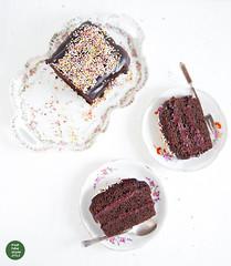 Simple vegan gingerbread-carob cake with cranberry…