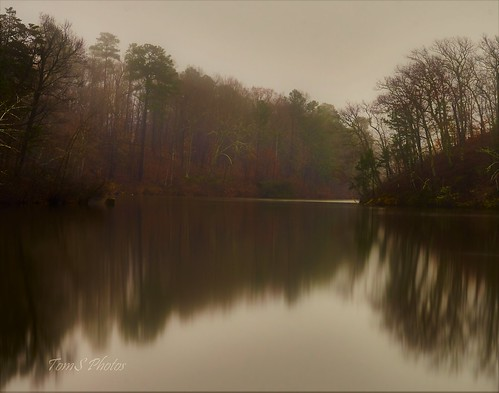 fog foggy misty lake water petersburgva petersburgvirginia nature naturelover lakelover natureseeker longexposure virginia calm landscape naturescape reflection tree trees scenery natureshots forest morning mist placid cloud woods blur