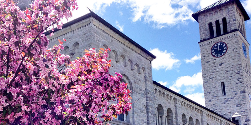 A very pretty time for our campus! (Photo courtesy Hannah Dies)