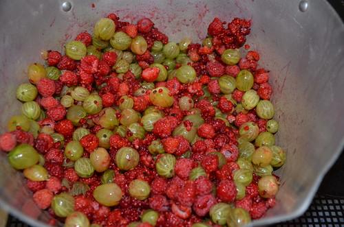 raspberry and gooseberry jam July 15 1