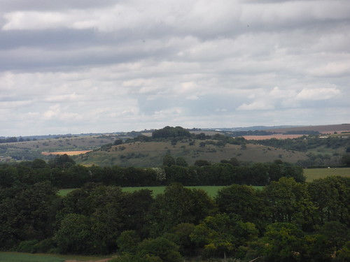 St. Catherine's Hill from Compton Down