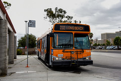 Los Angeles County Metro Orion Bus Industries 06.501 CNG #11010