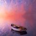 [ Vertorama ] ... Sunset on a peaceful world .... by Yannick Lefevre