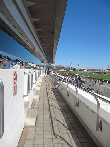 中山競馬場一般席の通路