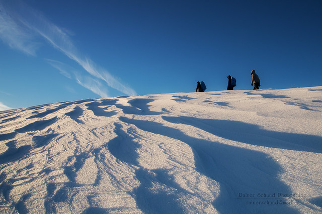 Polar Karawan