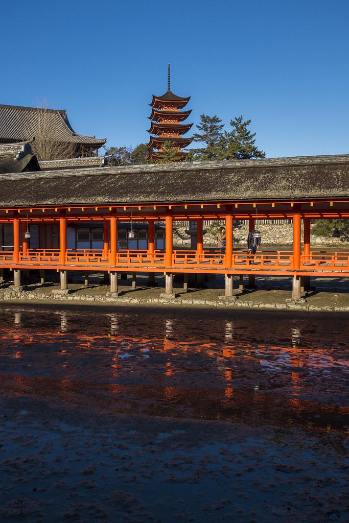 Itsukushima Shrine (嚴島神社)