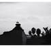 Marrakech Cigognes # 1 by bruXella & bruXellius