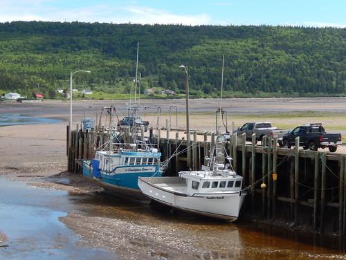 Low tide Advocate Harbour