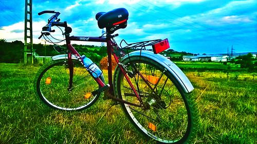 bikefieldsmallroadscountryroadsromaniabikingoldschoolbike