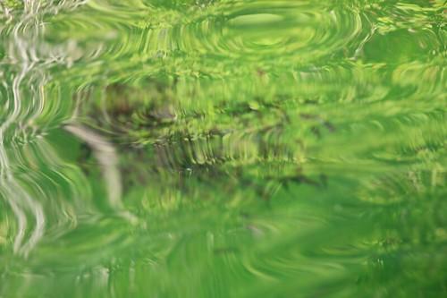 reflection water bluelakebostonbar