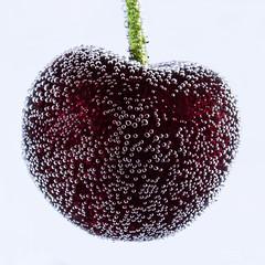 Prickling Cherry #2