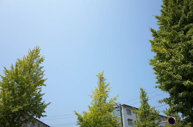 2015年8月3日の空-01