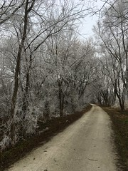 Wabash Trace in winter