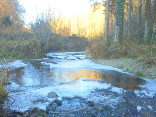 Icy ruisseau de la Liresse entering the Semois.