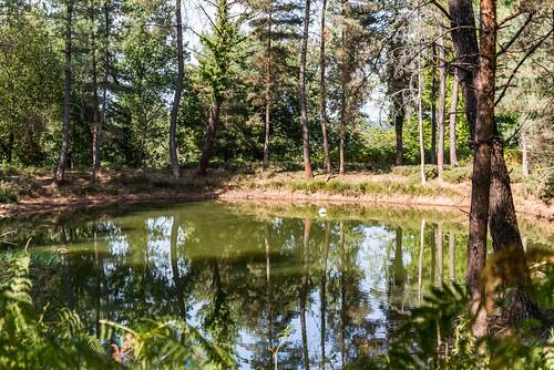 08-Un autre étang 45°04'36.2