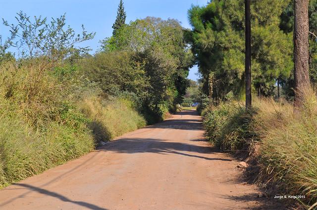 Caminos de El Zanjón