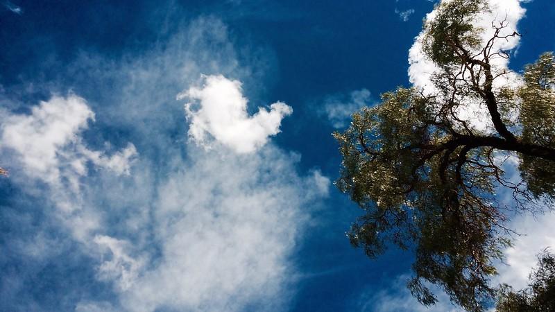 Cielo de San Pedro de Atacama