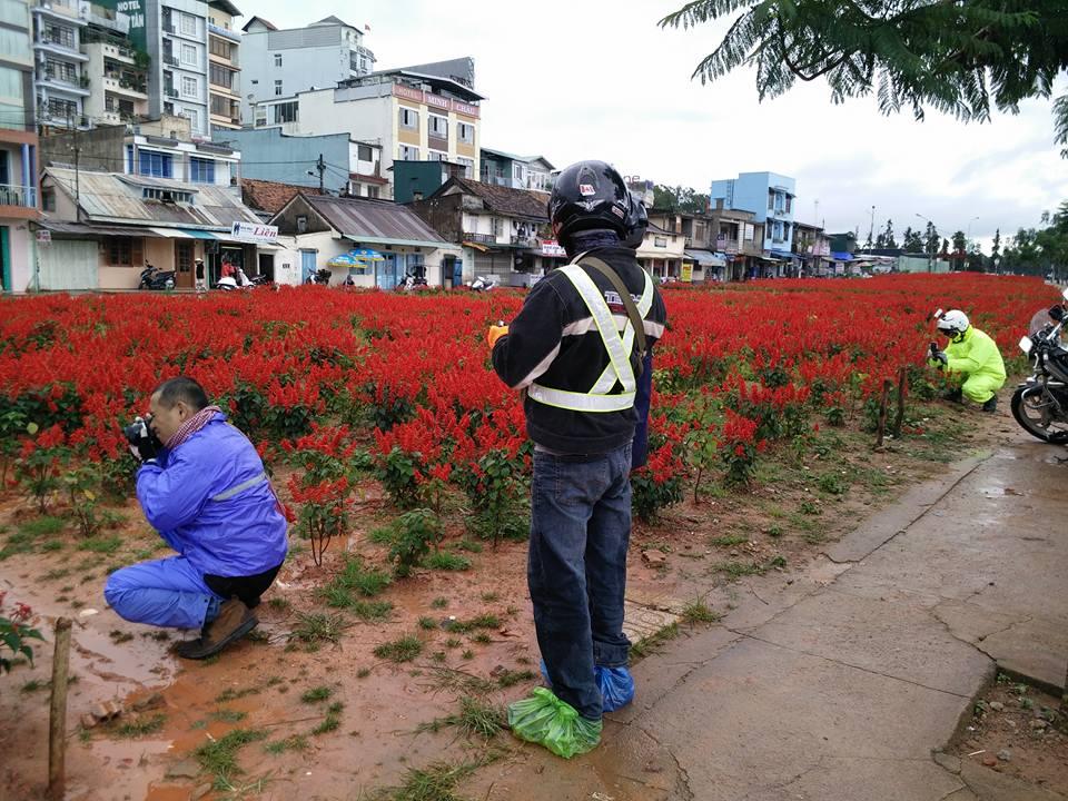 19363260388 b6a39f60b7 o - [Phượt] - SG-Cổ Thạch- Nha Trang- Đà Lạt: ngàn dặm mua hạt é cho người thương