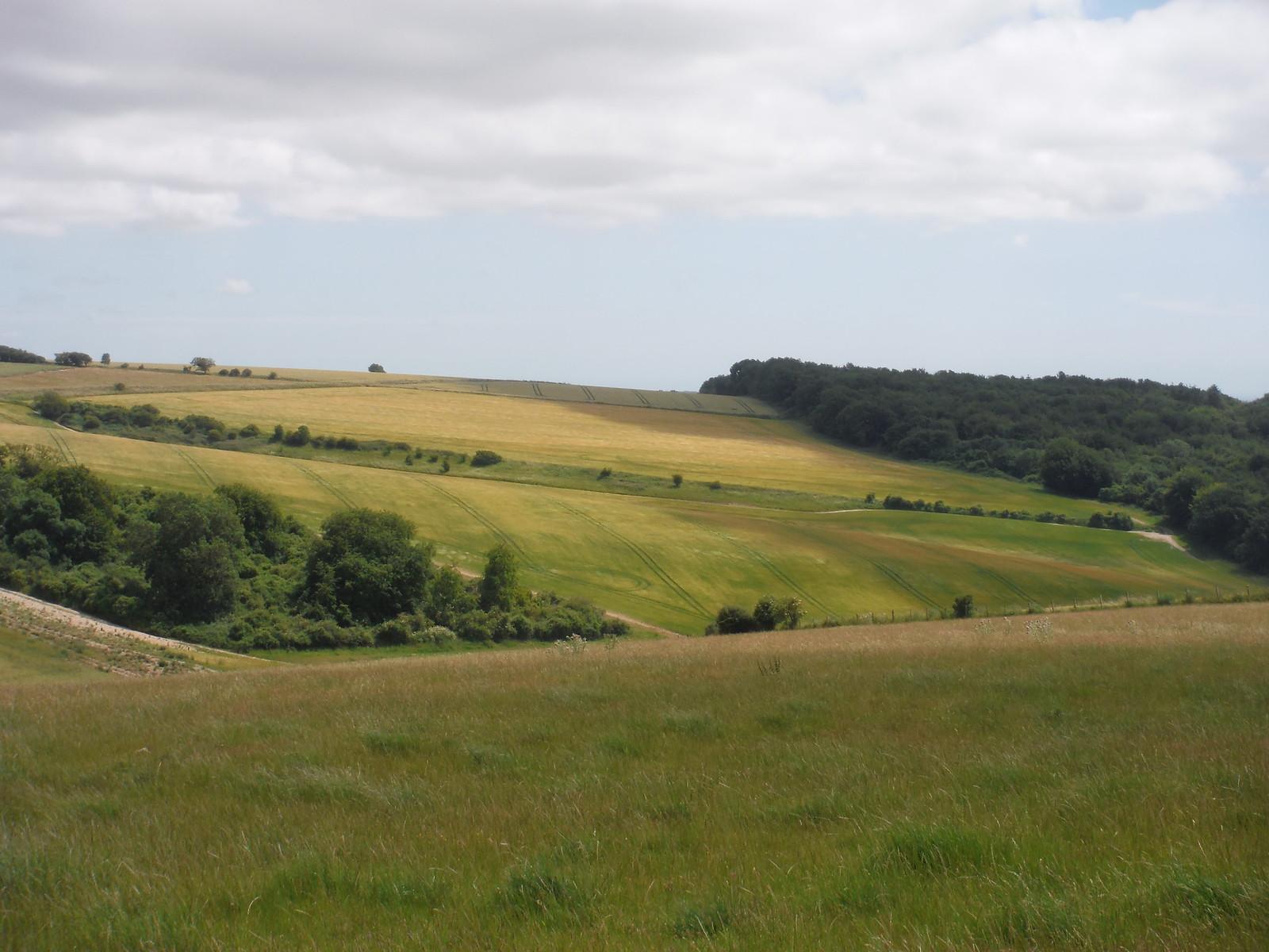View from Westburton Hill SWC Walk 217 Midhurst Way: Arundel to Midhurst