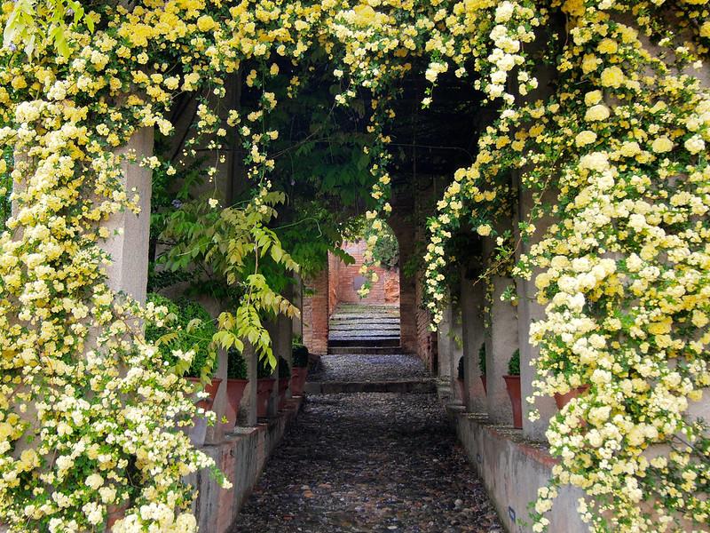 Generalife Gardens in Granada, Spain