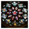 Rosetón de Amberes #belgica #vacaciones #holidays #catedral #antwerp