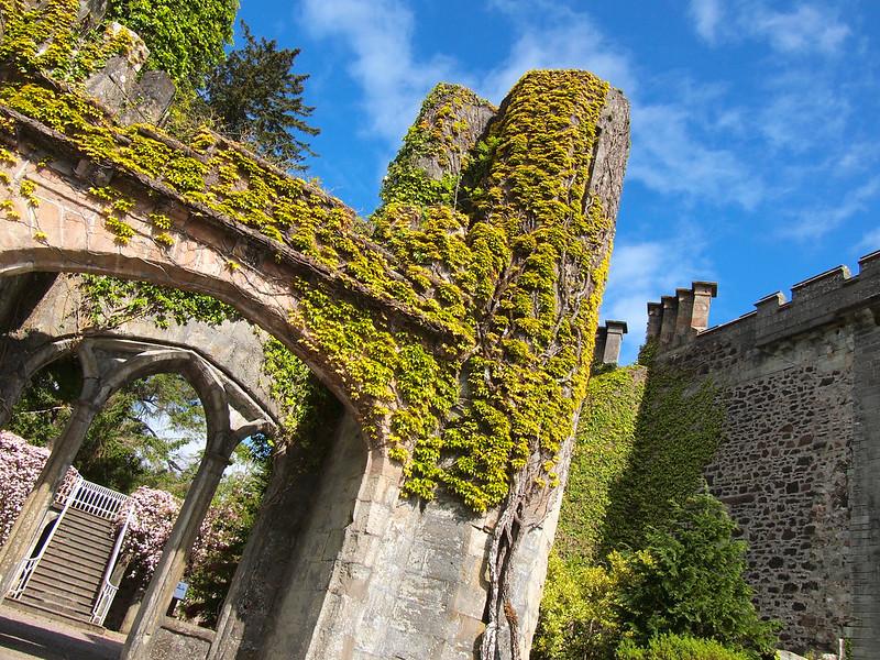 Ruined castle on the Isle of Skye
