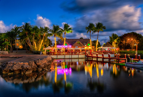 bar bluehour citylandscape commercialbuildings evening fl florida keylargo nature northamerica palm palmtree palmtrees restaurant seafront seaside smallgroupoftrees southeast trees twilight us usa unitedstates unitedstatesofamerica waterfront cityscape