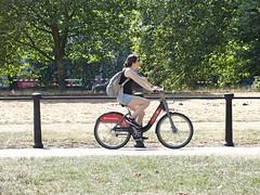 Rotten Row Cyclist