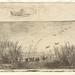 Charles-Francois Daubigny - Le Marais aux Canards, 1862/1921 by The Patrick Montgomery Collection