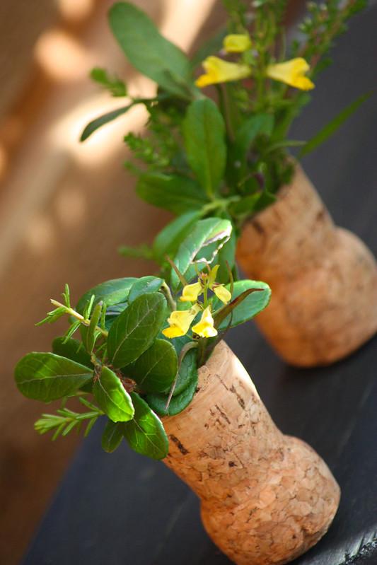 Pullonkorkista vaasi kasveille Kaikki Paketissa