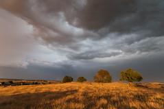 Soir d'orage, près de Malbouzon