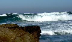 Coastline near Monterey California
