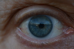 Eye'm Alive - Explored