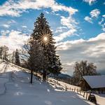 15. Jaanuar 2017 - 14:19 - Winterstimmung auf dem Zugerberg