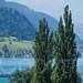 Paddle Steamer Schiller on Lake Lucerne, Weggis, Central Switzerland