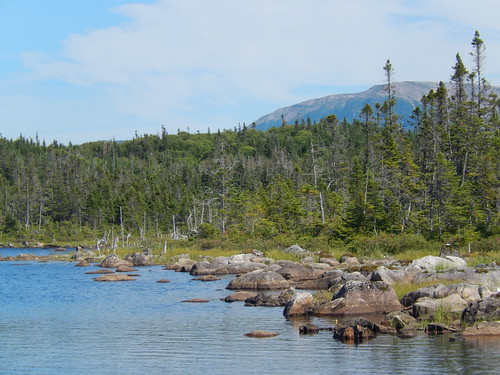 Gros Morne NP - Berry Hill Pond Trail -3