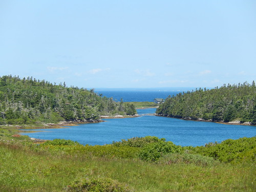 Canso - Grassy Islands boottocht - 3