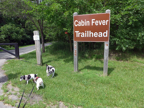 2015-07-21 - The Other End of Cabin Fever - 0001 [flickr]