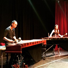 percussion, vibraphone, marimba, xylophone, folk instrument, musical theatre, stage, performance art,