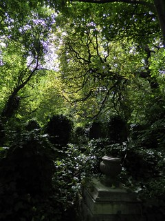 Abney Park Cemetary 409 - London