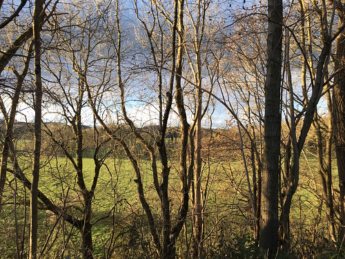 Winter view from the old railway track