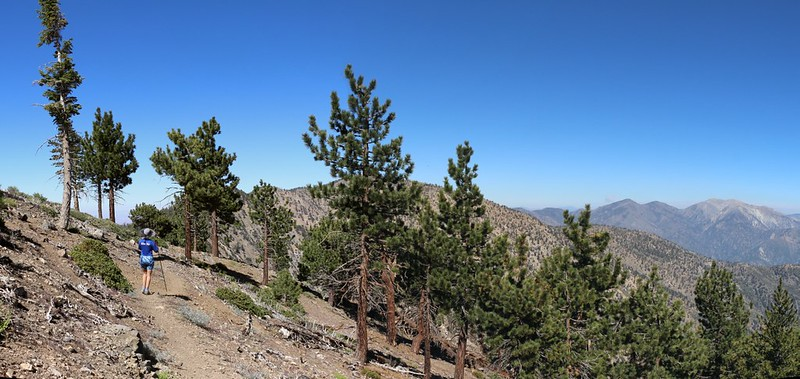 Hiking back to camp on the PCT west of Throop Peak, with Mount Baden-Powell and Mount Baldy.