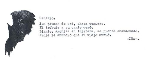 Canario.