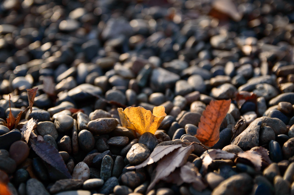 End of autumn