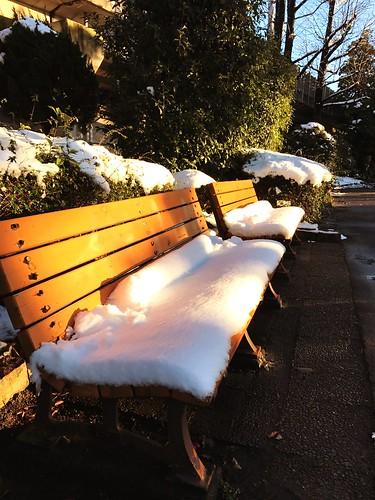 Snow Cushion Cushion